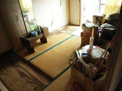 shiroari2.jpg